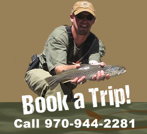 Book a Trip with Lake City Anglers Today!