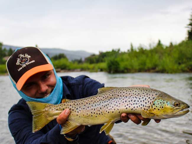 Bobby Eckert landed one of these impressive Browns.