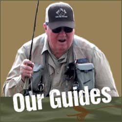 Link to Dan's Flyfishing Guides page